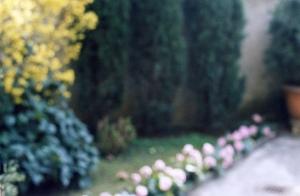 C. Sottocornola, Il giardino di mia madre...