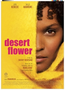 artwork-desert-flower