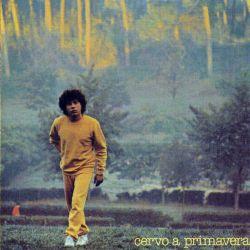 Cervo-A-Primavera-cover
